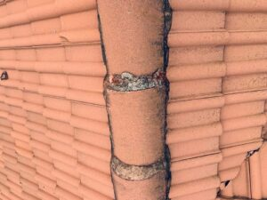 Mortar cracked and mold growth